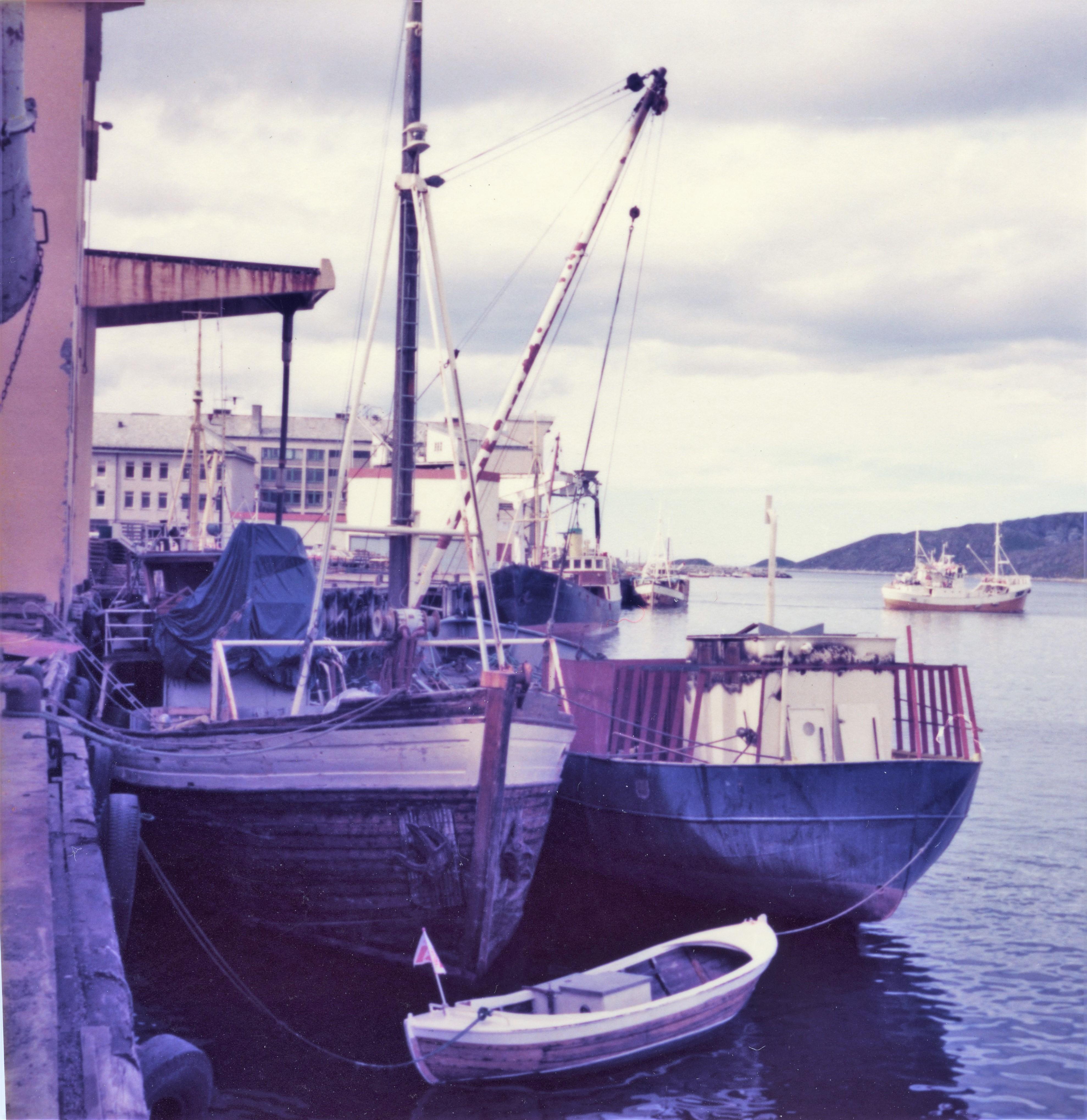 Fjordgubben, Saltgubben og Dyrafjell, Bodø 1977, Tom Bjørge Jensen