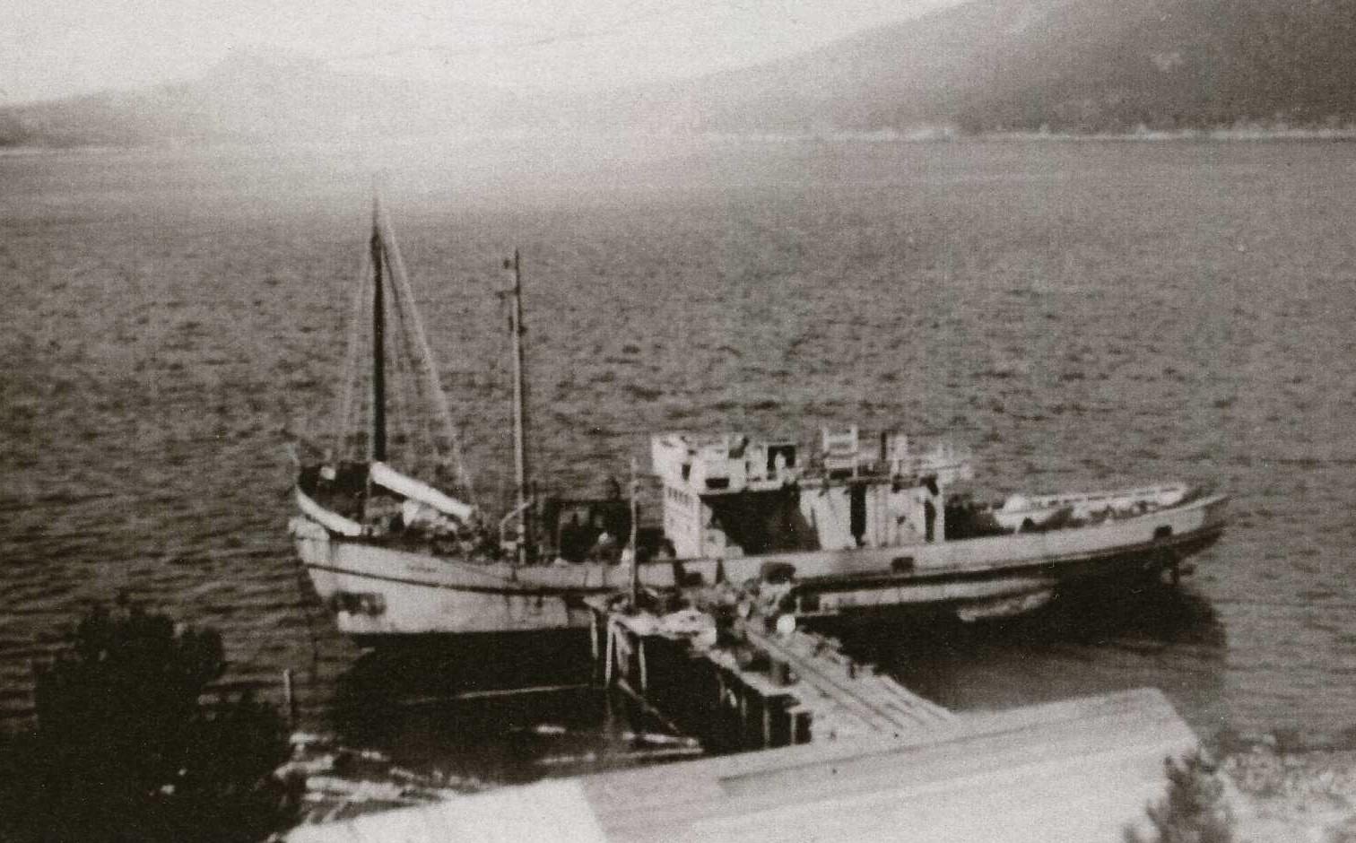 MMS 173 1 Taftøy
